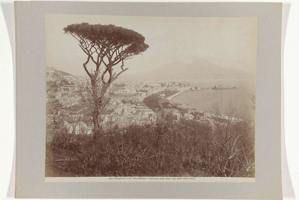 Gezicht op Napels (de wijk Vomero?) met een pijnboom op de voorgrond
