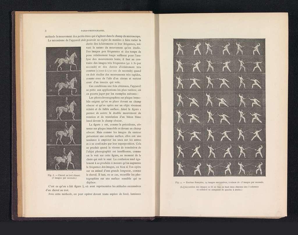 Vijf beelden van een paard met ruiter in draf