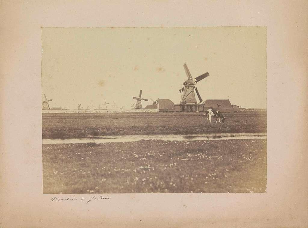 Landschap met op de voorgrond de oliemolen De Virgilius in Oostzaandam