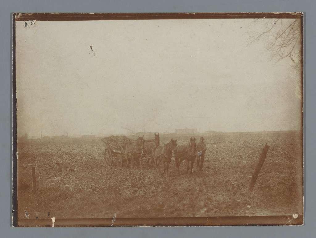 Gezicht op een weiland met een boer en een paardenkar