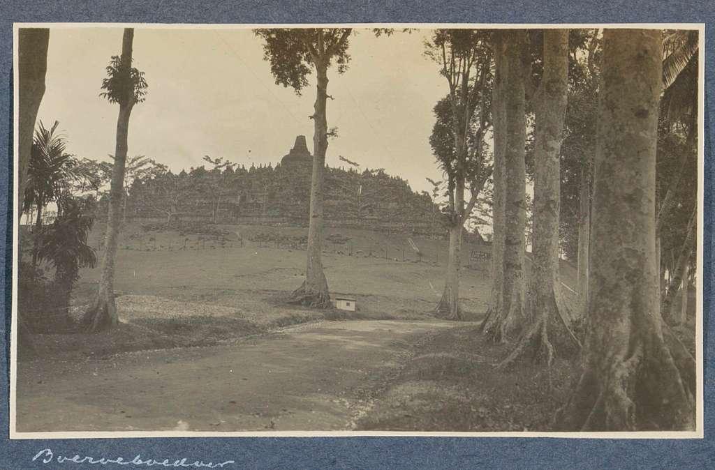 Gezicht op de Borobudur op Java met op de voorgrond bomen