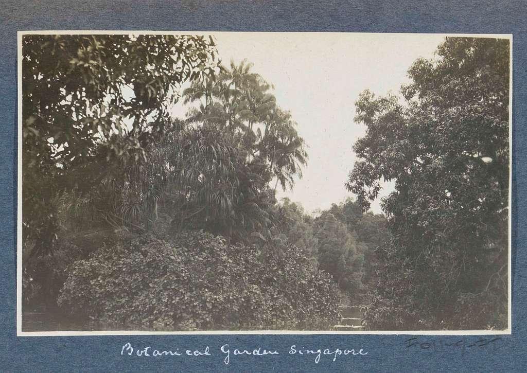 Botanische tuin van Singapore