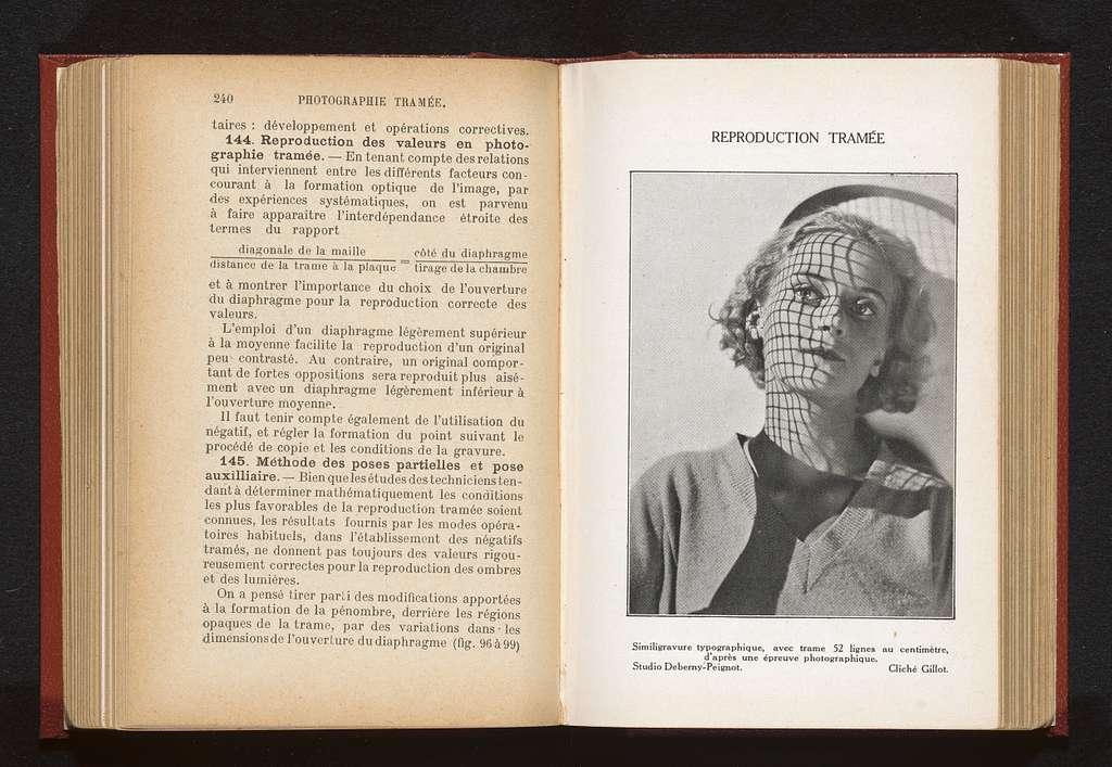 Portret van een onbekende vrouw met door projectie een raster op haar gezicht